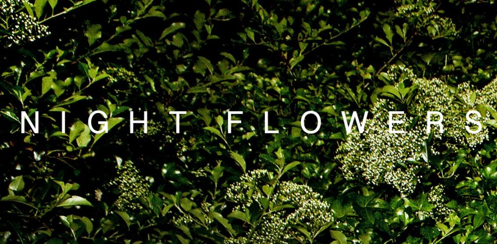 Night-Flowers-1024x503